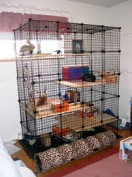 rabbit-cage-designs